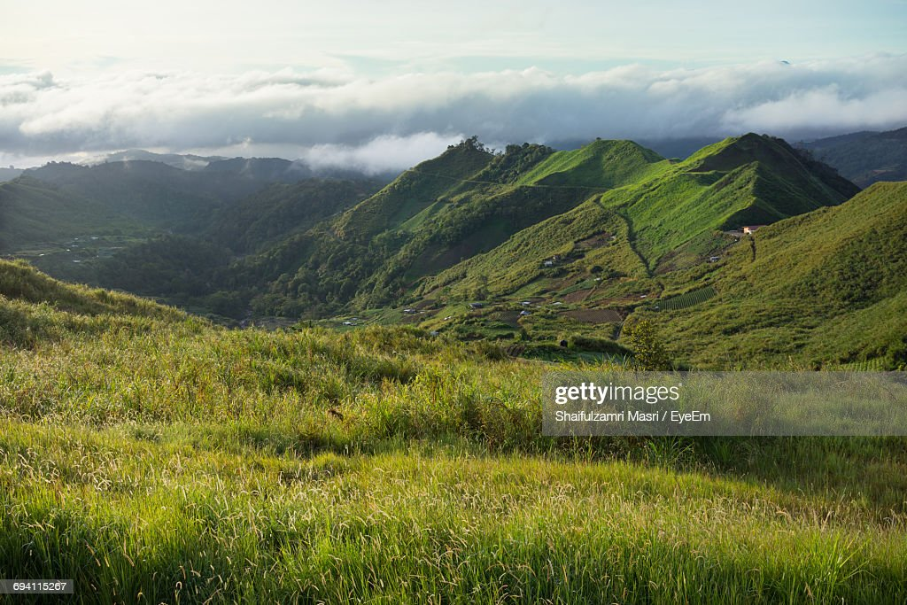 Scenic View Of Green Landscape Against Sky : Stock Photo