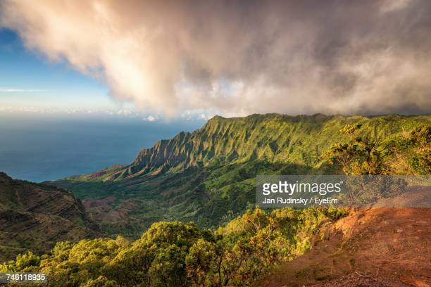 scenic view of green landscape against sky - waimea valley stock photos and pictures