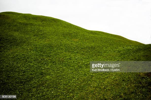 scenic view of green landscape against sky - colina - fotografias e filmes do acervo