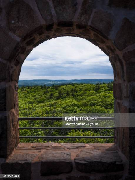 scenic view of green landscape against sky - ニューヘイブン ストックフォトと画像