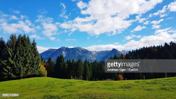 Scenic View Of Green Landscape And Mountains Against Blue Sky