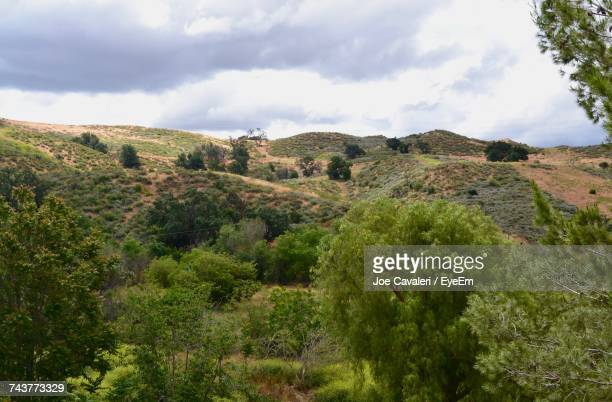 scenic view of green landscape and mountains against sky - simi valley stock photos and pictures