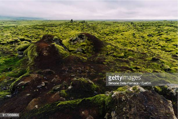 Scenic View Of Green Landscape By Sea Against Sky