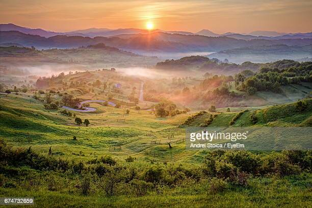 scenic view of green landscape during sunset - ルーマニア ストックフォトと画像