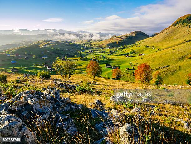 Scenic View Of Green Landscape On Sunny Day
