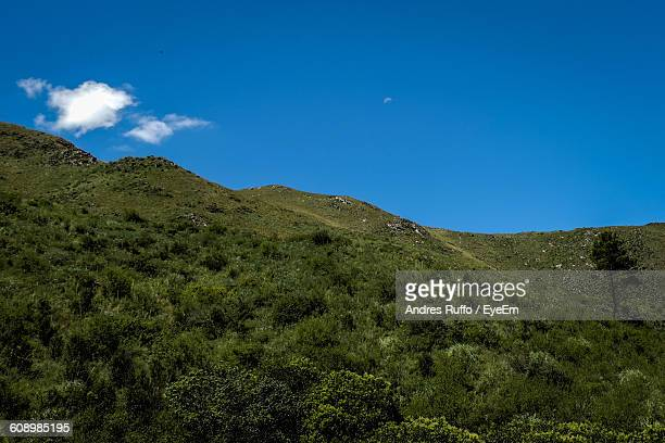 scenic view of green mountain against blue sky - andres ruffo bildbanksfoton och bilder