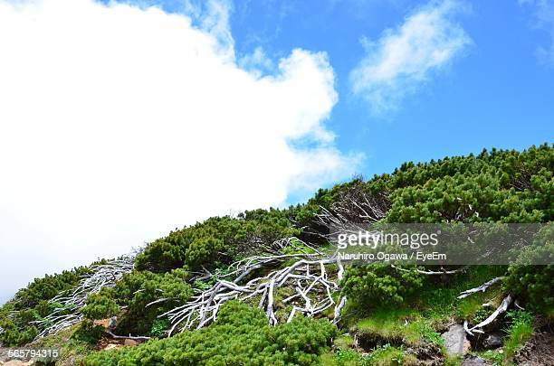 Scenic View Of Green Mountain Against Cloudy Sky