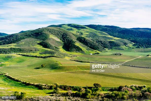 Scenic view of green rolling landscape