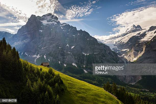 Scenic view of Grindelwald-First, Switzerland