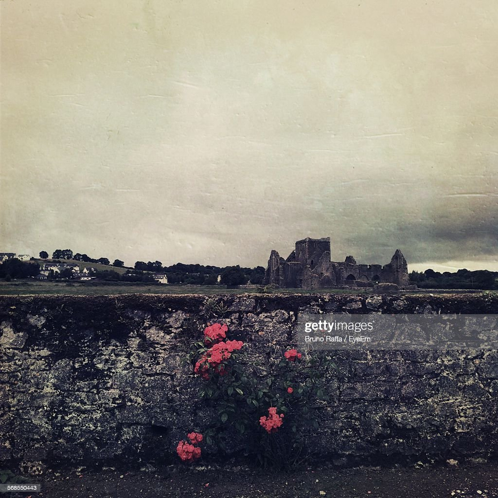 Scenic View Of Hore Abbey Against Cloudy Sky : Stock Photo