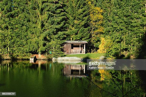 scenic view of hut in forest - hut stock pictures, royalty-free photos & images