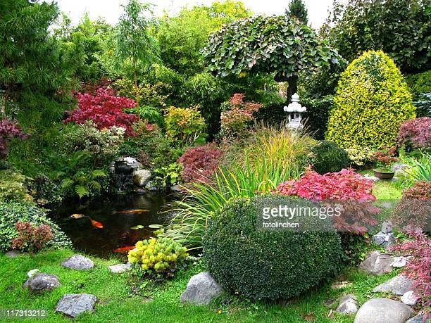scenic view of japanese garden with koi-pond - japanese garden stock photos and pictures