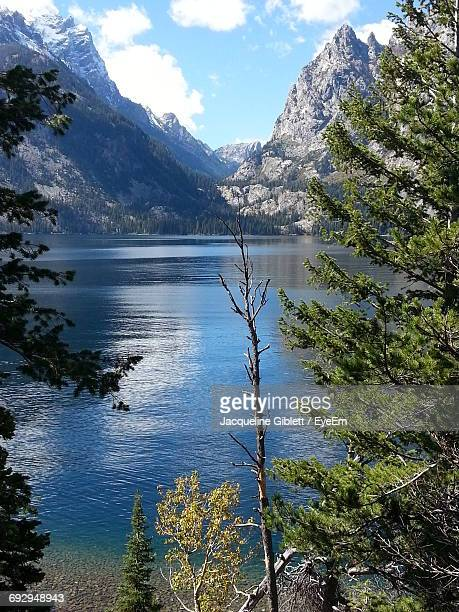 Scenic View Of Jenny Lake And Mountains