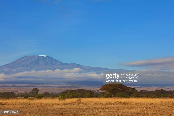 scenic view of kilimanjaro in kenya - kilimanjaro stock photos and pictures