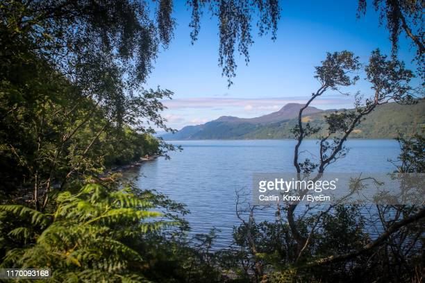 scenic view of lake against blue sky - drumnadrochit stock pictures, royalty-free photos & images