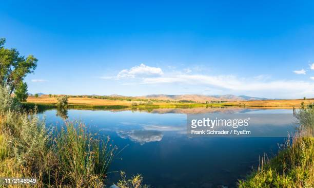 scenic view of lake against blue sky - frank schrader stock pictures, royalty-free photos & images