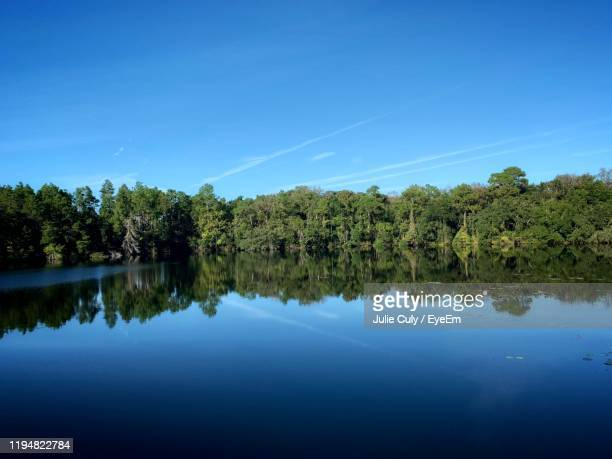 scenic view of lake against blue sky - julie culy stock pictures, royalty-free photos & images