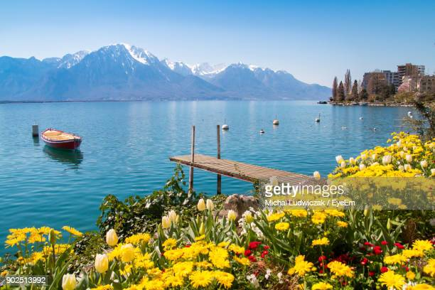 scenic view of lake against blue sky - montreux stock pictures, royalty-free photos & images