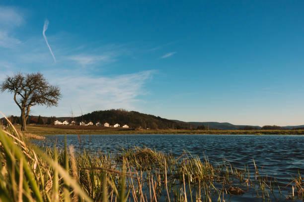 Scenic view of lake against blue sky,Freiolsheim,Gaggenau,Germany