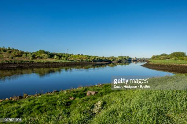 scenic view of lake against clear blue sky - stockton on tees stock pictures, royalty-free photos & images