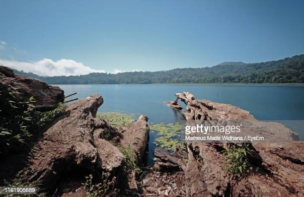 scenic view of lake against clear blue sky - made widhana stock photos and pictures
