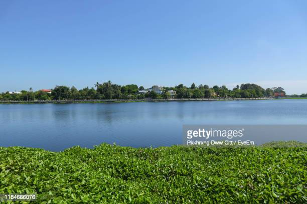 scenic view of lake against clear blue sky - thai mueang photos et images de collection