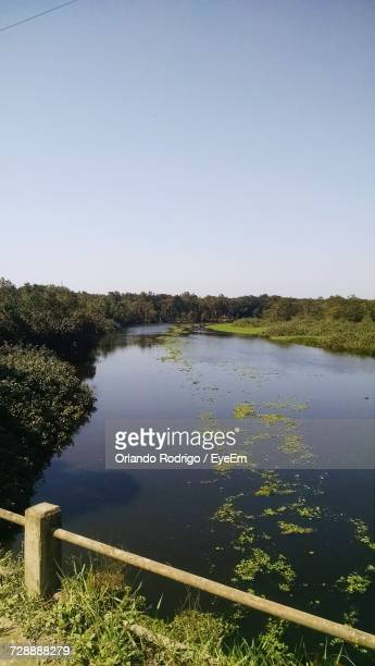 scenic view of lake against clear blue sky - special:whatlinkshere/file:lucerne_circle,_orlando,_fl.jpg stock pictures, royalty-free photos & images