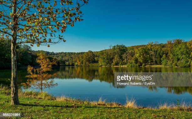 scenic view of lake against clear blue sky - montgomery county pennsylvania stock pictures, royalty-free photos & images