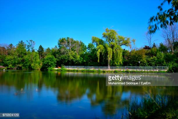 scenic view of lake against clear blue sky - mississauga stock pictures, royalty-free photos & images