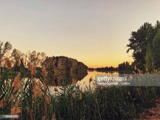 scenic view of lake against clear sky at sunset - zamora stock pictures, royalty-free photos & images