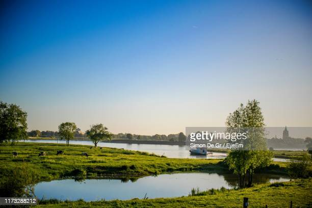 scenic view of lake against clear sky - breda stock pictures, royalty-free photos & images