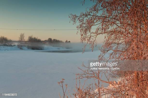 scenic view of lake against clear sky - heinovirta stock photos and pictures