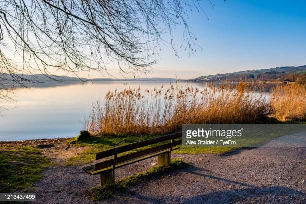 scenic view of lake against clear sky - seeufer stock-fotos und bilder