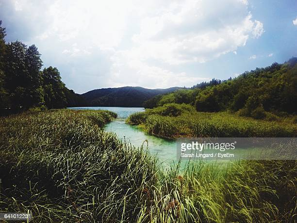 scenic view of lake against cloudy sky - lingard stock pictures, royalty-free photos & images