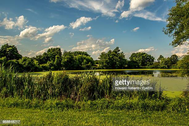 scenic view of lake against cloudy sky - montgomery county pennsylvania stock pictures, royalty-free photos & images