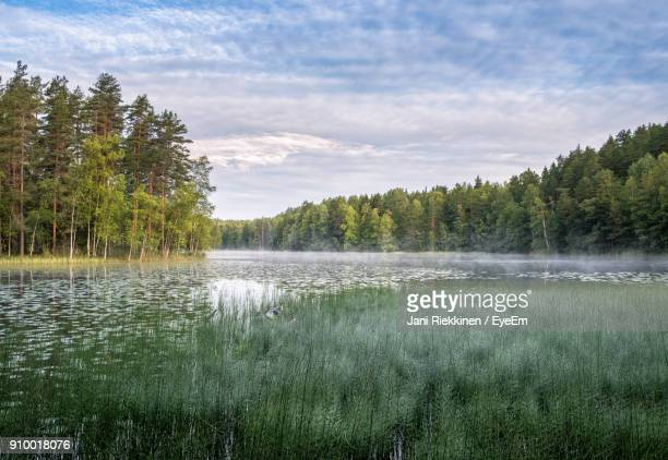 scenic view of lake against cloudy sky - espoo stock pictures, royalty-free photos & images