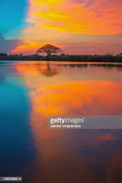 scenic view of lake against dramatic sky during sunset, thailand - reflection lake stock pictures, royalty-free photos & images