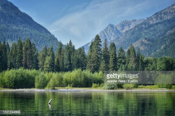scenic view of lake against mountains - jennifer reed stock pictures, royalty-free photos & images