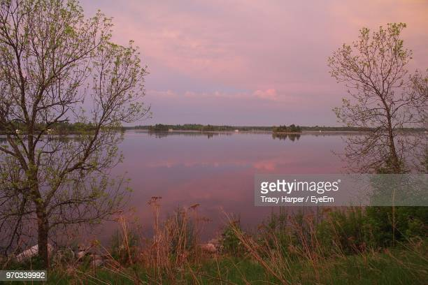 scenic view of lake against sky at sunrise - kenora stock pictures, royalty-free photos & images
