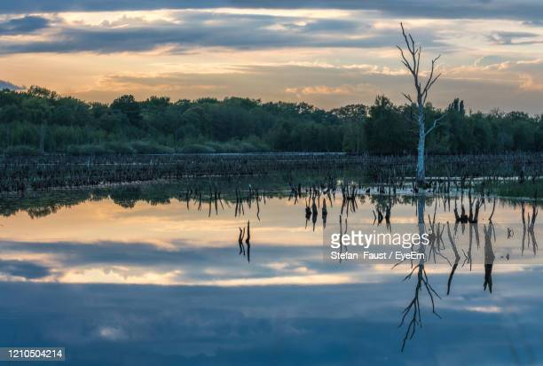 scenic view of lake against sky at sunset - オランダ リンブルフ州 ストックフォトと画像
