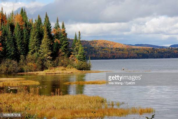 scenic view of lake against sky during autumn - シャウィニガン ストックフォトと画像