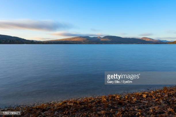scenic view of lake against sky during autumn - glasgow stock pictures, royalty-free photos & images