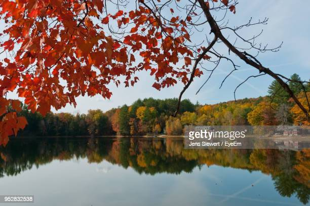scenic view of lake against sky during autumn - jens siewert stock-fotos und bilder