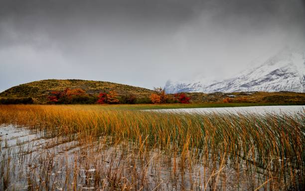 Scenic view of lake against sky during autumn,Patagonia chilena,Chile