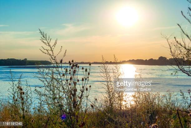 scenic view of lake against sky during sunset - serbia stock pictures, royalty-free photos & images