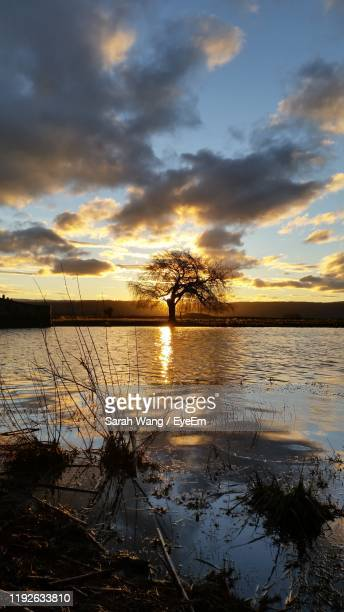 scenic view of lake against sky during sunset - wang he stock pictures, royalty-free photos & images