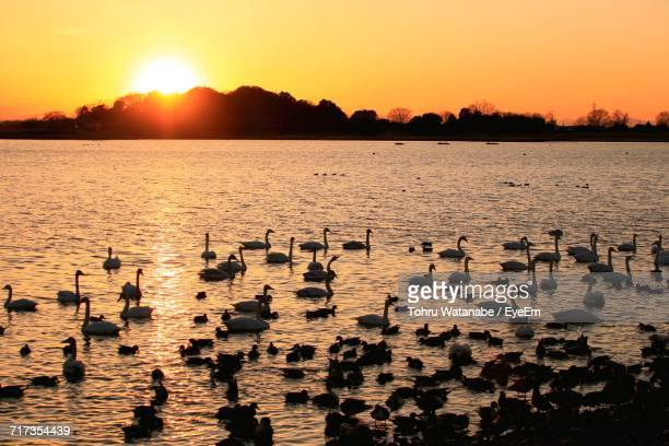 scenic view of lake against sky during sunset - gunma prefecture stock photos and pictures