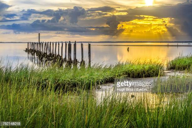 scenic view of lake against sky during sunset - tallahassee stock pictures, royalty-free photos & images