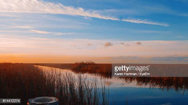 scenic view of lake against sky during sunset - coral springs stock pictures, royalty-free photos & images