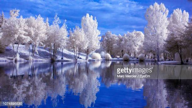 scenic view of lake against sky during winter - toulouse stock pictures, royalty-free photos & images